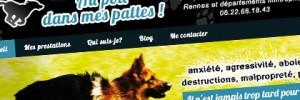 Conception de site internet à Rennes