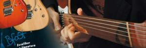 Design catalogue et pubs – Vigier Guitars