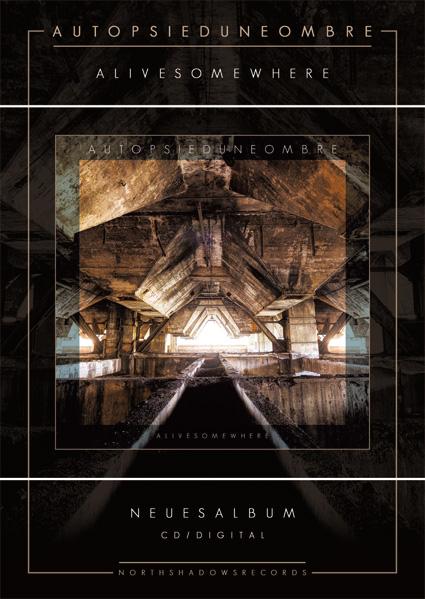 encart promo album cd digital